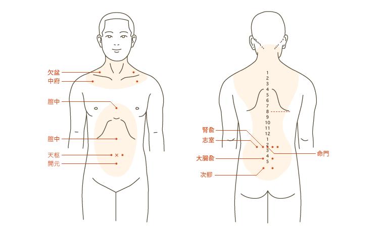 食道・胃・大腸のガン ) ビワ温...